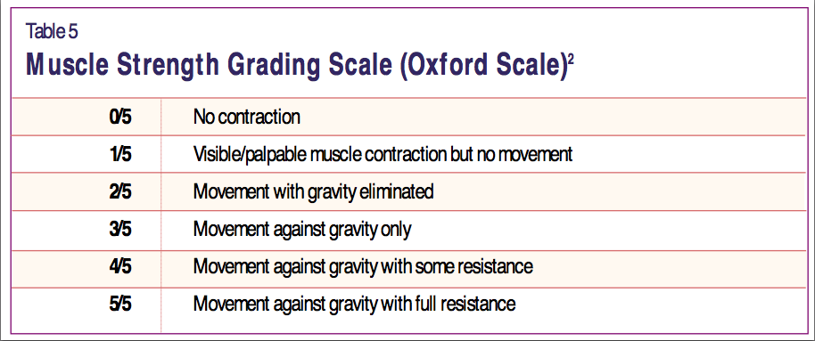 Oxford Grading Scale for Strength: Shoulder Range of Motion - Pilates Therapy