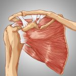 The Empty Can Test for Subacromial Impingement - Pilates Therapy